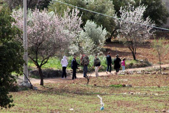 Riad de l'olivier 04